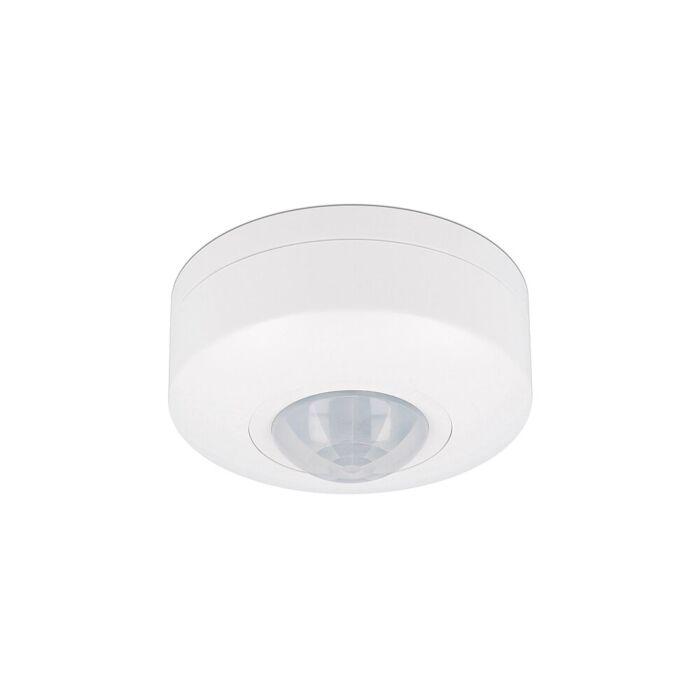 LED Bewegungsmelder Decke Aufbau Weiß 6m